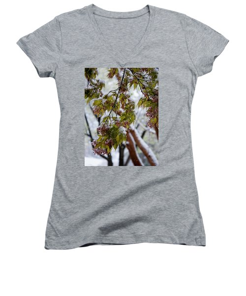 snow on the Cherry blossoms Women's V-Neck T-Shirt (Junior Cut) by Chris Flees