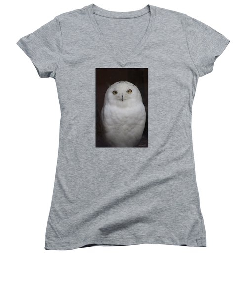 Snow Owl Women's V-Neck (Athletic Fit)
