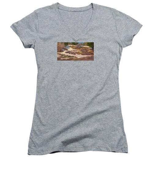 Snow Patch Women's V-Neck T-Shirt (Junior Cut) by Jane Thorpe