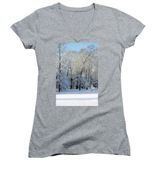 Snow Scene One Women's V-Neck T-Shirt (Junior Cut) by Donna Bentley
