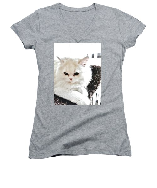 Snowball Is 92 Year Old Widows Cat Women's V-Neck T-Shirt (Junior Cut) by Marsha Heiken