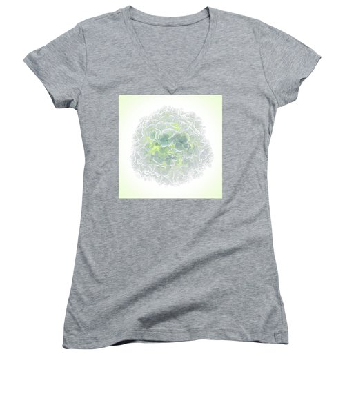 Snowball Women's V-Neck T-Shirt (Junior Cut) by Robert FERD Frank