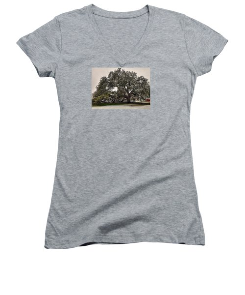 Snowfall On Emancipation Oak Tree Women's V-Neck T-Shirt