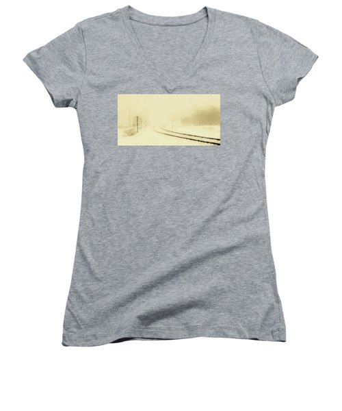 Snowstorm In The Yard S Women's V-Neck T-Shirt