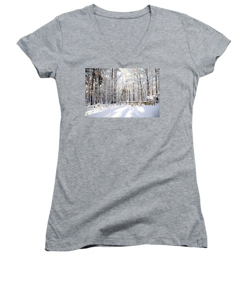 Snowy Chicken Coop Women's V-Neck (Athletic Fit)