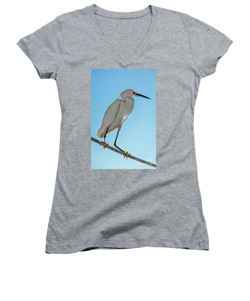 Snowy Egret Women's V-Neck T-Shirt (Junior Cut) by Robert Bales