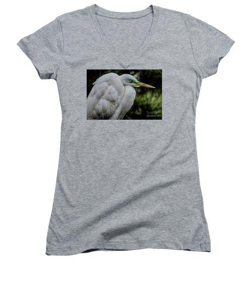 Snowy Egrets Women's V-Neck T-Shirt