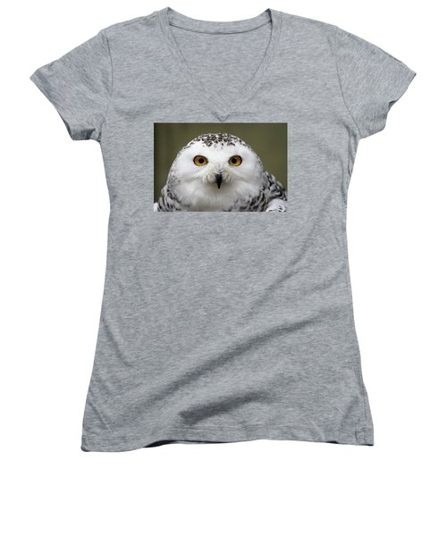 Snowy Eyes Women's V-Neck