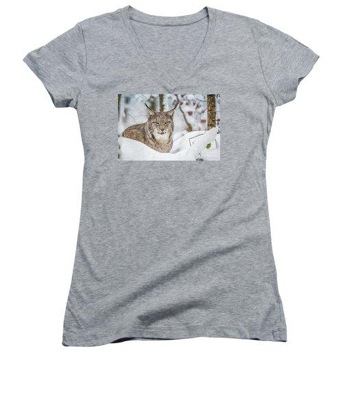 Snowy Lynx Women's V-Neck
