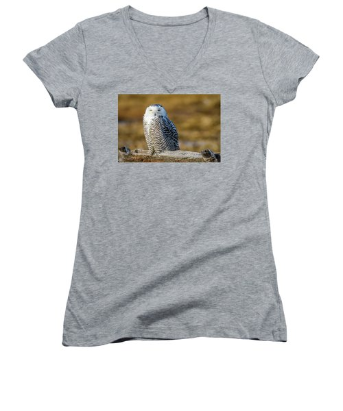 Women's V-Neck featuring the photograph Snowy On Log by Michael Hubley