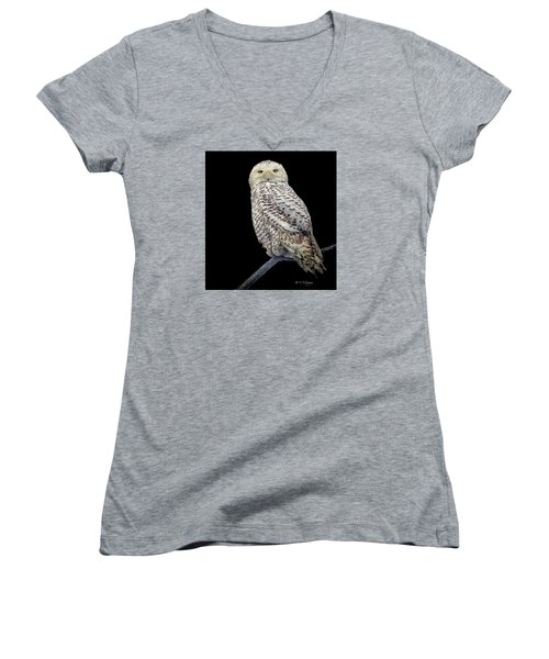 Snowy Owl On Black Women's V-Neck T-Shirt (Junior Cut) by Constantine Gregory
