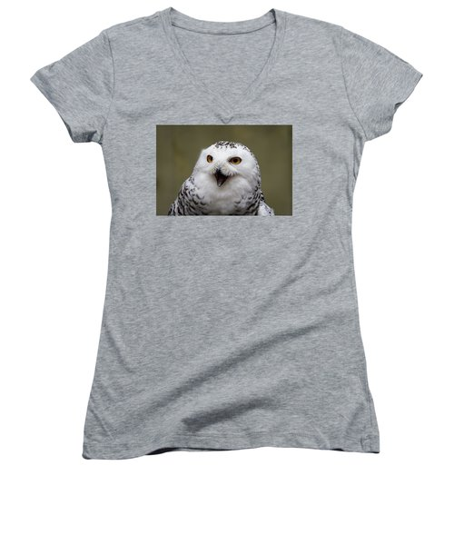 Women's V-Neck featuring the photograph Snowy Sings by Michael Hubley