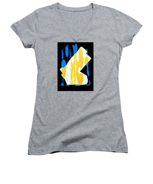 Women's V-Neck T-Shirt (Junior Cut) featuring the photograph Socks by Bob Pardue