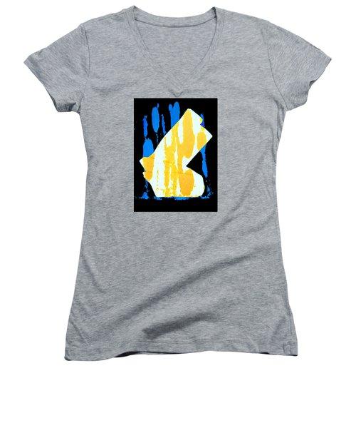 Socks Women's V-Neck T-Shirt