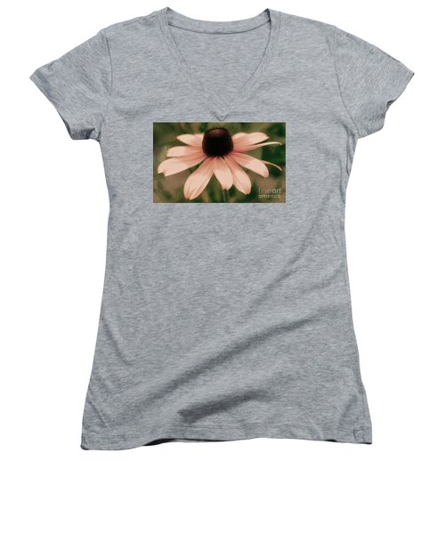 Soft Delicate Pink Daisy Women's V-Neck T-Shirt