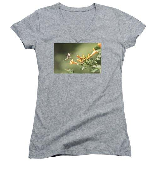 Soft Landing Women's V-Neck T-Shirt (Junior Cut) by Robert Pearson