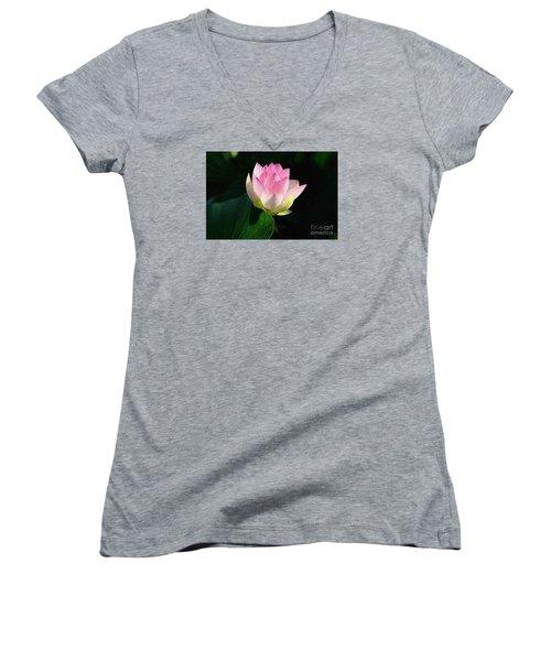 Soft Light  Women's V-Neck T-Shirt (Junior Cut) by John S