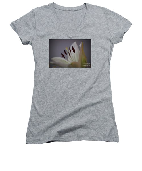 Soft Lily Women's V-Neck T-Shirt (Junior Cut) by Roberta Byram
