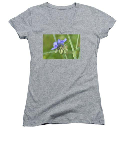 Soft Purple Spider Women's V-Neck T-Shirt