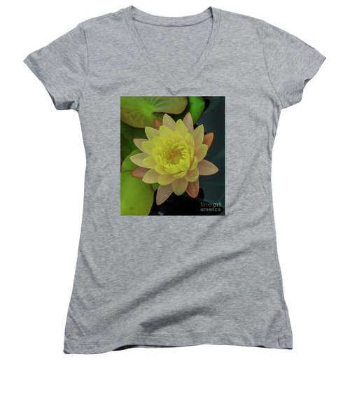 Softly Pink And Yellow Lilly Women's V-Neck T-Shirt