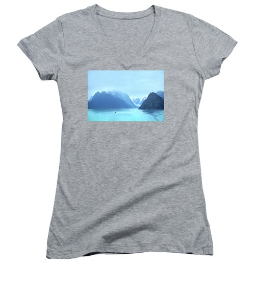 Women's V-Neck T-Shirt (Junior Cut) featuring the photograph Sojourn by John Poon