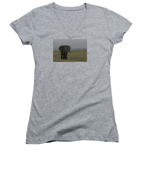 Women's V-Neck T-Shirt (Junior Cut) featuring the photograph Solitary Bull Elephant by Gary Hall