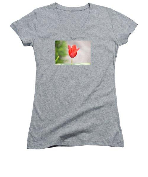 Solo Tulip Women's V-Neck T-Shirt (Junior Cut) by William Bartholomew