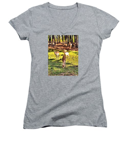 Something This Way Cometh Women's V-Neck (Athletic Fit)