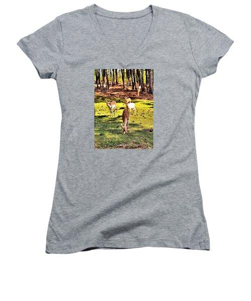 Something This Way Cometh Women's V-Neck T-Shirt