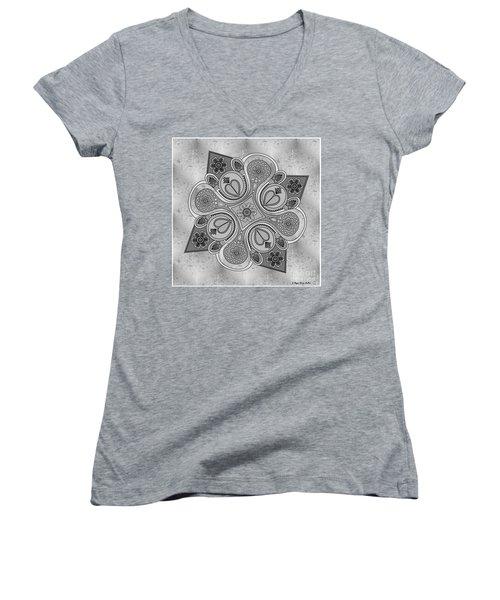 Something2 Women's V-Neck T-Shirt (Junior Cut) by Megan Dirsa-DuBois