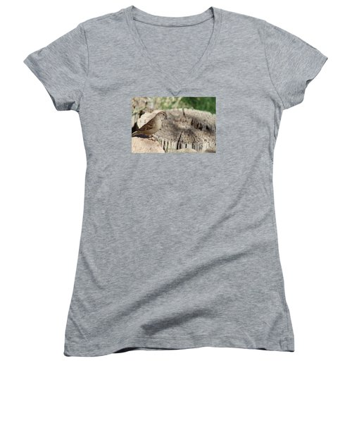 Song Sparrow Looks Curious Women's V-Neck T-Shirt