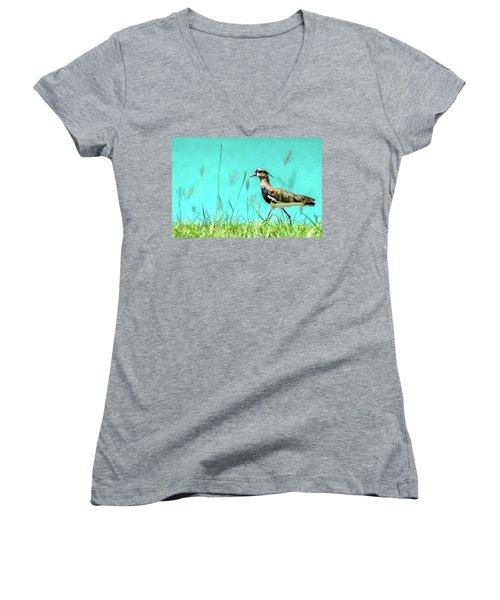 Southern Lapwing Women's V-Neck T-Shirt (Junior Cut) by Randy Scherkenbach