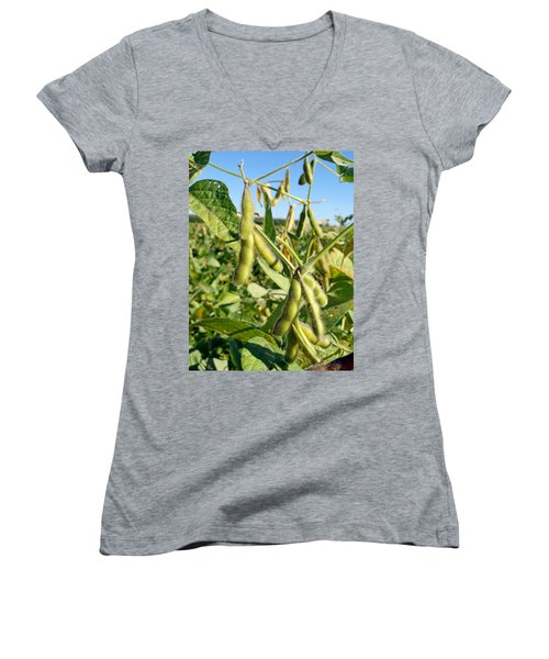 Soybeans In Autumn Women's V-Neck (Athletic Fit)