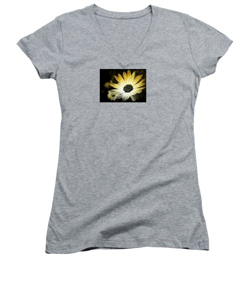 Sparkle Daisies Women's V-Neck T-Shirt (Junior Cut) by Robin Regan
