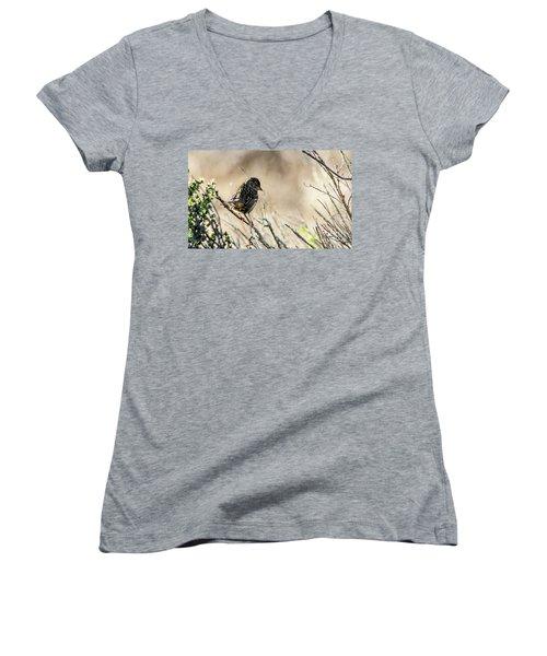 Snarky Sparrow Women's V-Neck