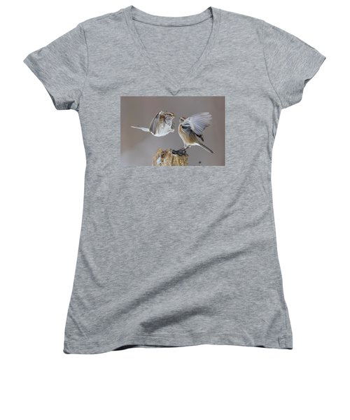 Women's V-Neck T-Shirt (Junior Cut) featuring the photograph Sparrows Fight by Mircea Costina Photography