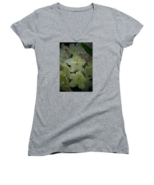 Women's V-Neck T-Shirt (Junior Cut) featuring the photograph Speckled In Gold by Ramona Whiteaker