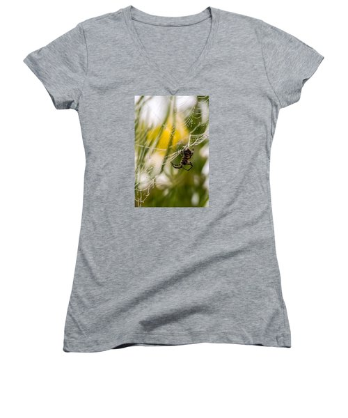 Spider And Spider Web With Dew Drops 04 Women's V-Neck