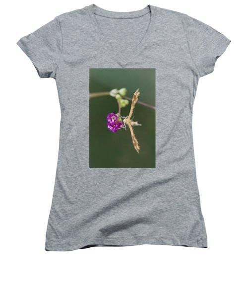 Spiderling Plume Moth On Wineflower Women's V-Neck T-Shirt