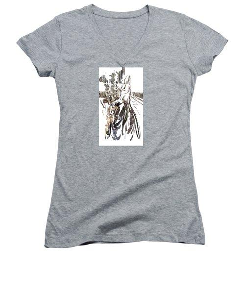 Spirit Animal . Owl Women's V-Neck T-Shirt