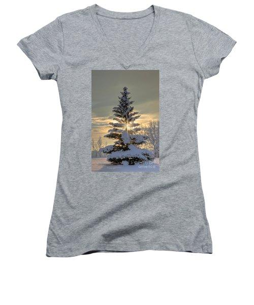 Spirit Tree Women's V-Neck T-Shirt (Junior Cut) by Brad Allen Fine Art