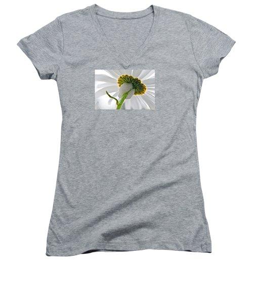 Spittle Bug Umbrella Women's V-Neck T-Shirt (Junior Cut) by Adria Trail