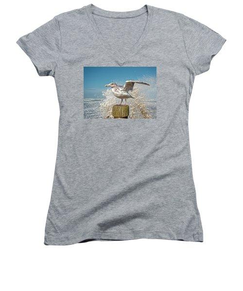 Splash Gull Women's V-Neck T-Shirt
