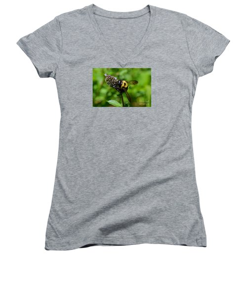 Spot, My Bumblebee Women's V-Neck (Athletic Fit)