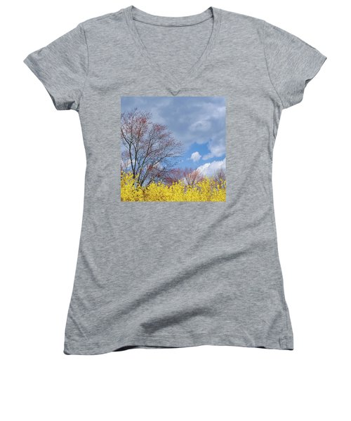 Women's V-Neck T-Shirt (Junior Cut) featuring the photograph Spring 2017 Square by Bill Wakeley