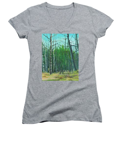 Spring Aspens Women's V-Neck T-Shirt