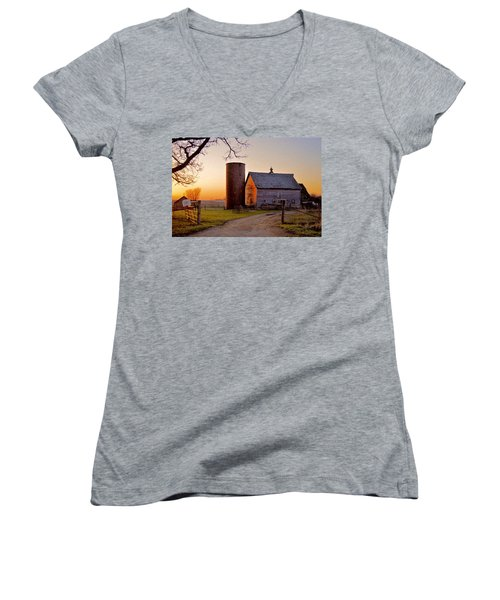 Spring At Birch Barn Women's V-Neck T-Shirt