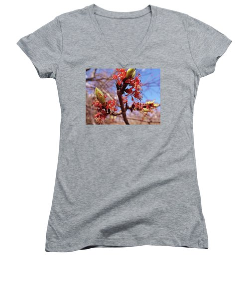 Spring Bloom #1 Women's V-Neck T-Shirt (Junior Cut) by Jason Williamson