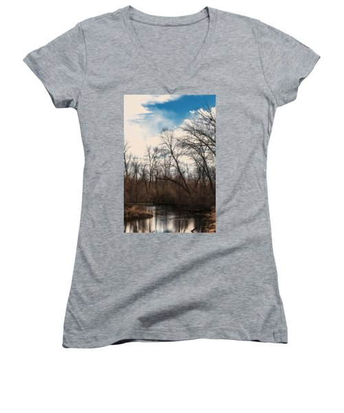 Spring Day Women's V-Neck T-Shirt (Junior Cut) by Edward Peterson