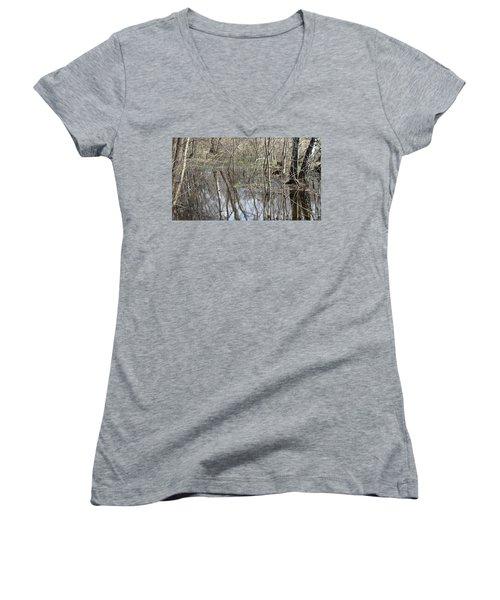 Spring Flood Women's V-Neck T-Shirt (Junior Cut) by Anna Yurasovsky